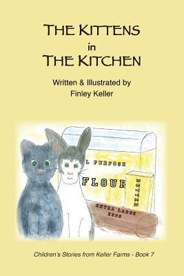 The Kittens in the Kitchen