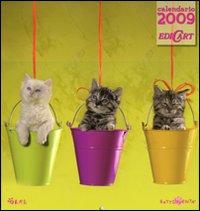 Gatti. Calendario 2009