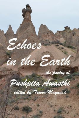 Echoes in the Earth