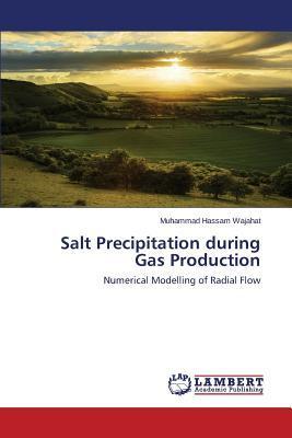 Salt Precipitation during Gas Production