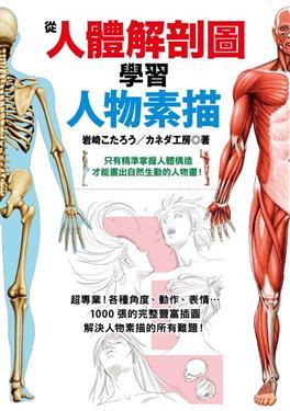 從人體解剖圖學習人物素描