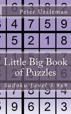Little Big Book of Puzzles