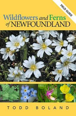 Wildflowers and Ferns of Newfoundland