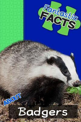 Fantastic Facts About Badgers