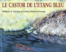 Le castor de l'étang bleu
