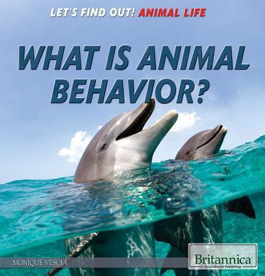 What Is Animal Behavior?