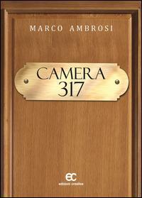 Camera 317