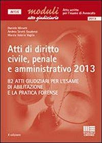 Atti di diritto civile, penale e amministrativo 2013. Ediz. illustrata