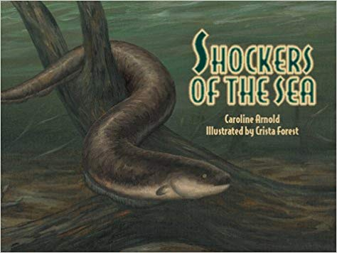 Shockers of the Sea