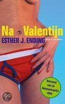 Na Valentijn / druk 3 (digitaal boek)