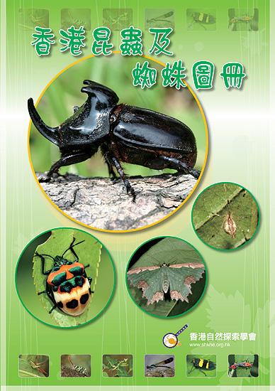 香港昆蟲及蜘蛛圖冊