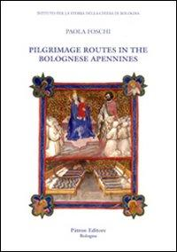 Pilgrimage routes in the bolognese Apennines