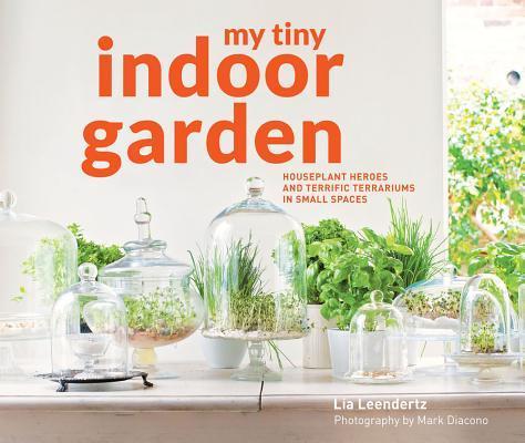 My Tiny Indoor Garden