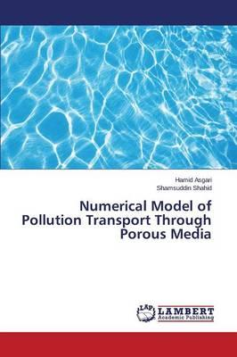Numerical Model of Pollution Transport Through Porous Media
