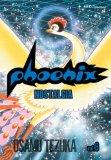 Phoenix, Volume 6