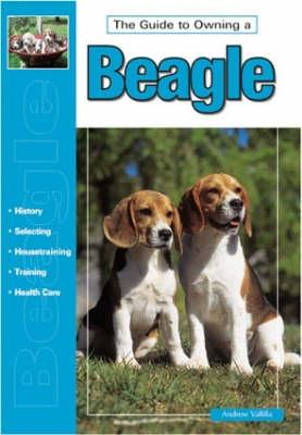 The Guide to Owning a Beagle