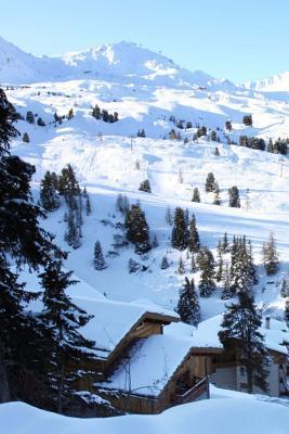 Ski Resort Journal
