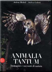 Animalia Tantum