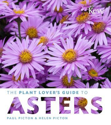 The Plant Lover's Guide to Asters
