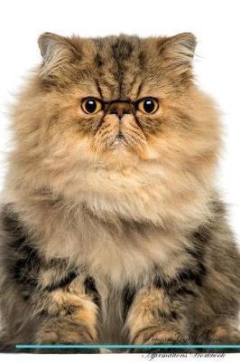 Persian Cat Affirmat...
