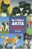 Guide to Owning an Akita