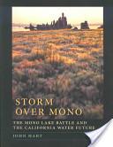 Storm Over Mono