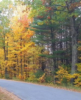 School Composition Book Pretty Fall Colors Country Road 130 Pages