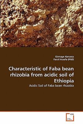 Characteristic of Faba bean rhizobia from acidic soil of Ethiopia