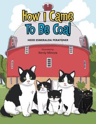 How I Came To Be Coal