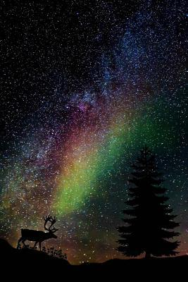 A Stag, the Aurora Borealis, and the Stars at Night Nature Journal
