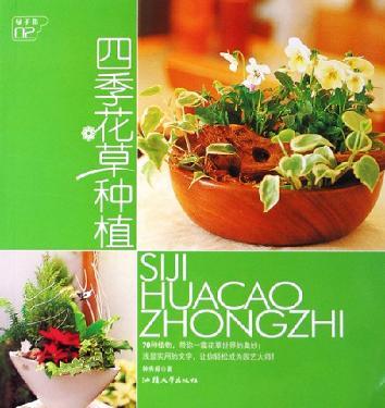 四季花草种植