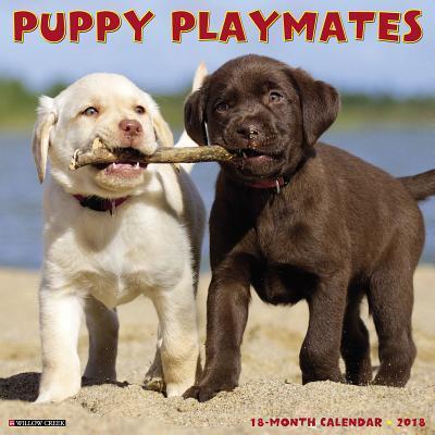 Puppy Playmates 2018 Calendar
