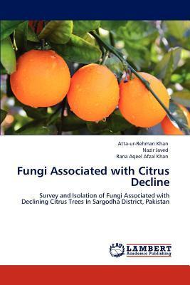 Fungi Associated with Citrus Decline