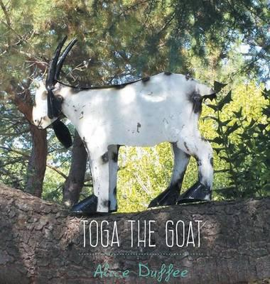 Toga the Goat