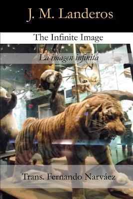 The Infinite Image