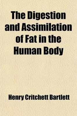 The Digestion and Assimilation of Fat in the Human Body