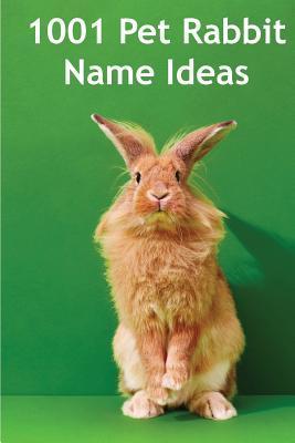 1001 Pet Rabbit Name Ideas