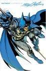 Batman Illustrated, Vol. 2