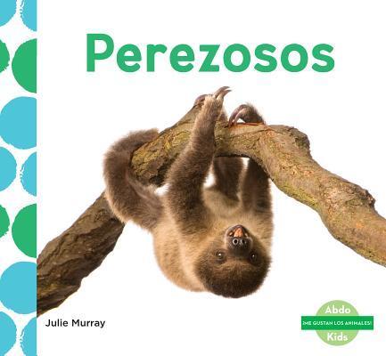 Perezosos / Sloths