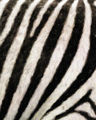 Zebra Texture Painted Notebook