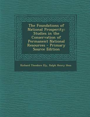 The Foundations of N...