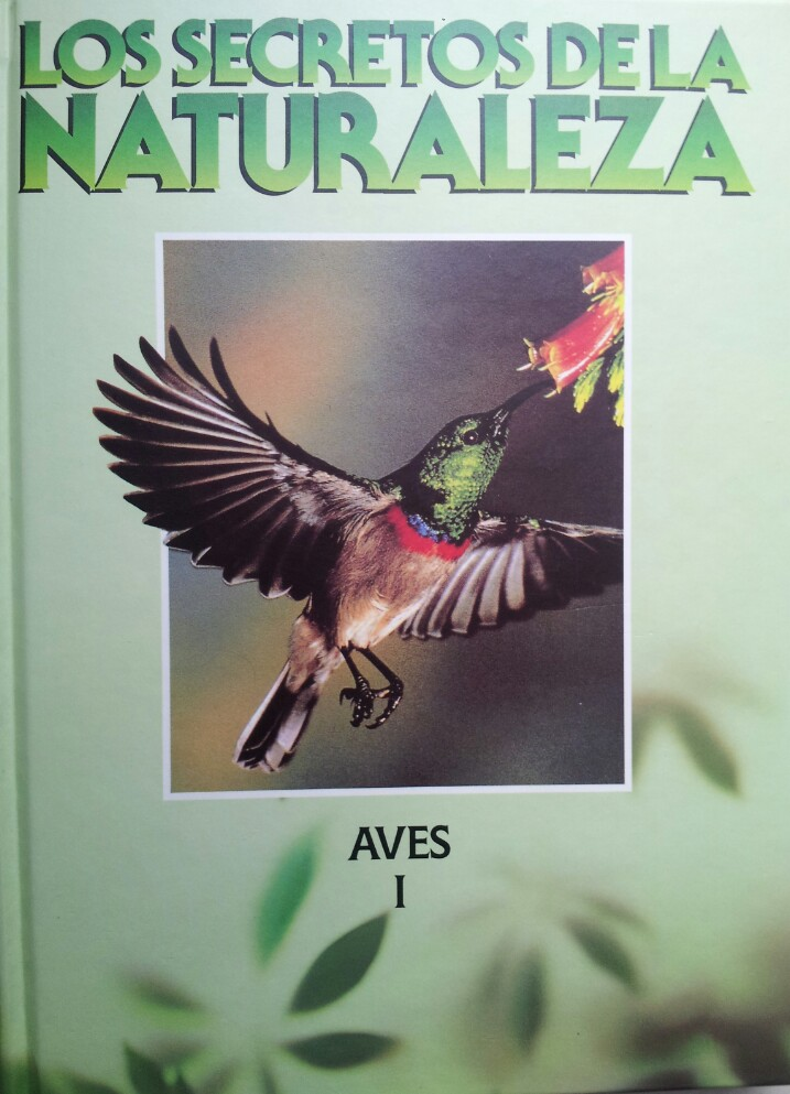 Los secretos de la naturaleza: Aves, 1