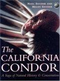 The California Condor