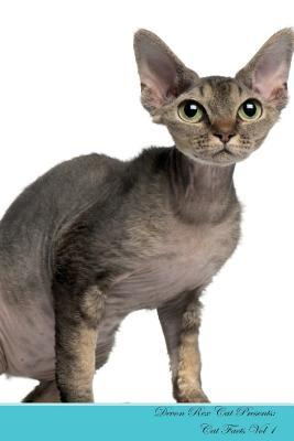 Devon Rex Cat Presents