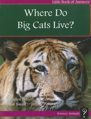 Where Do Big Cats Live?