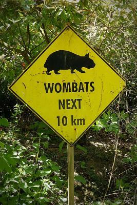 Wombat Sign Journal