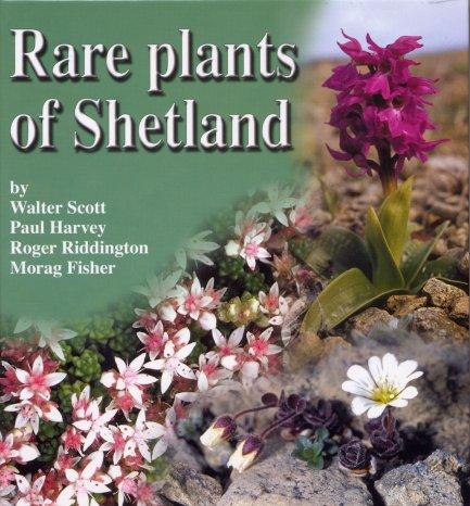 Rare Plants of Shetl...