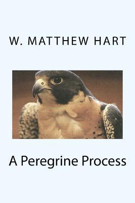 A Peregrine Process