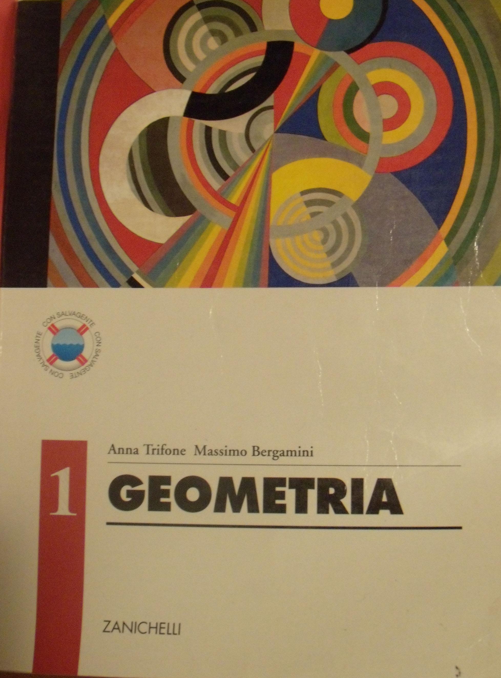Geometria. Vol. 1