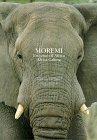 Moremi